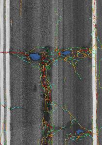 Pothole and Crack Detection Intensity Image