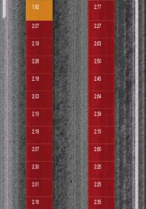 Bleeding Index Diplay on Intensity Image Severe (red) and Medium severity (orange)